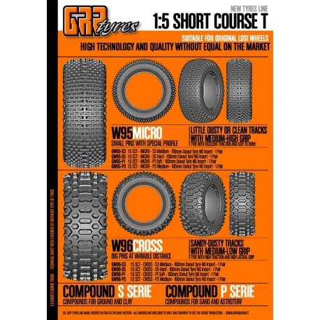 GW95 1/5 short course losi