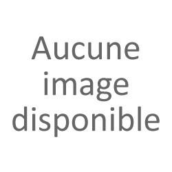 GUN TÉLÉCOMMANDE 2.4GHZ AM10T NOUVELLE VERSION